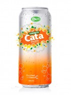 500ml OEM Carbonated Orange Flavor Drink